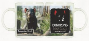 Bonorong wildlife sanctuary Tasmanian Devil
