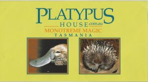Platypus House Tasmania - Custom Designs